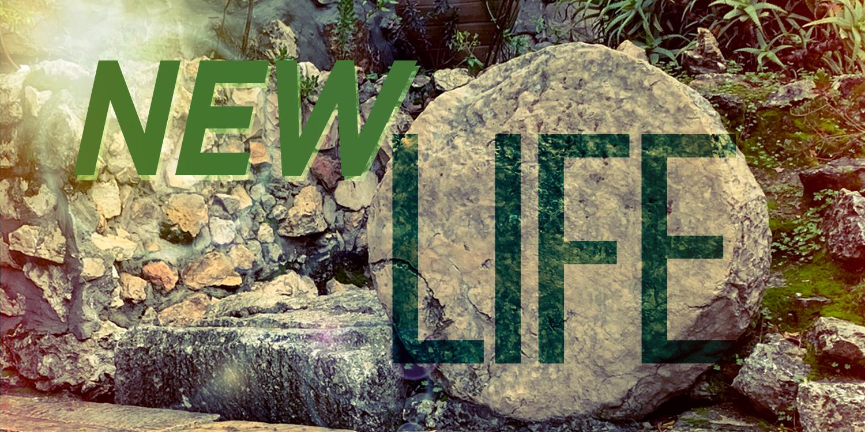 New Life Worship Series 2021  Andover UMC